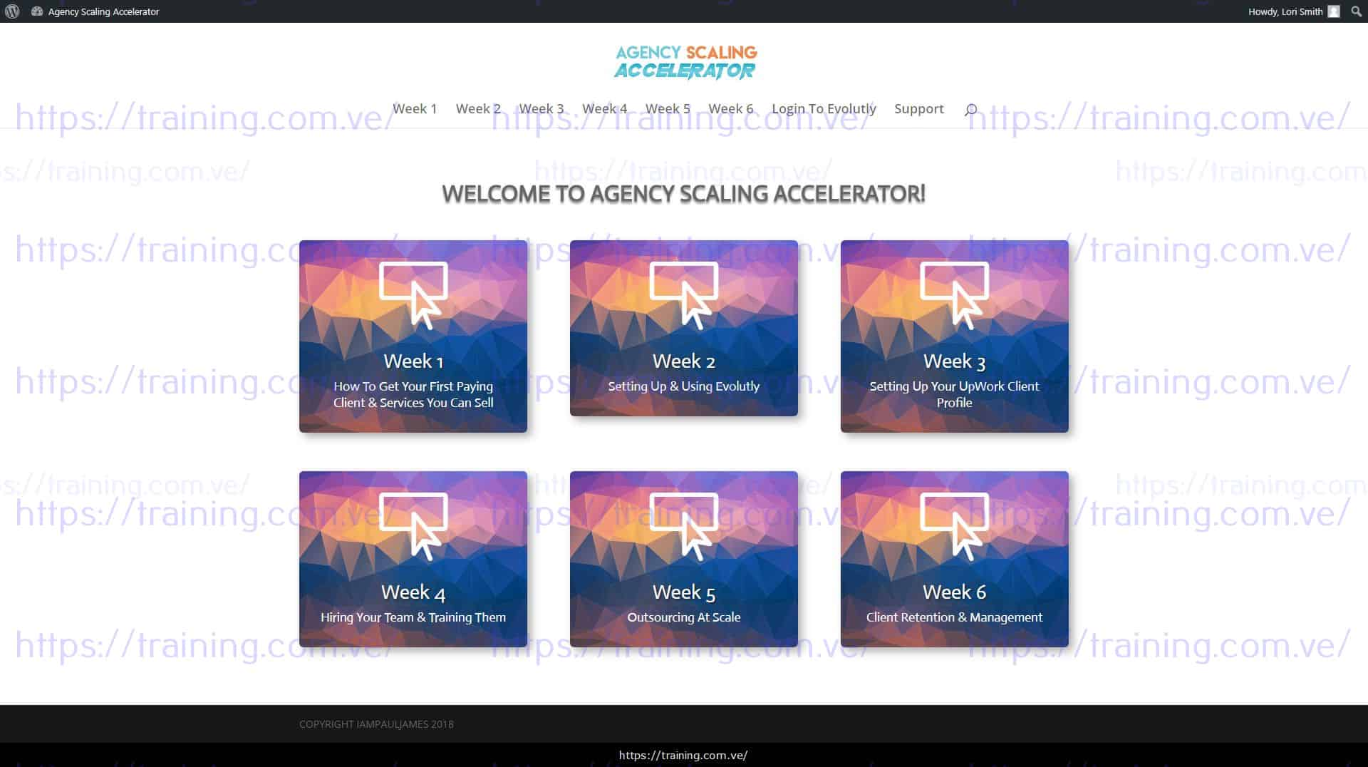Download Agency Scaling Accelerator by John Shea Paul James