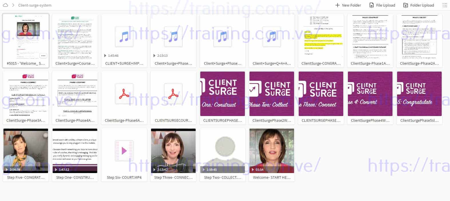 Client Surge System 8 Week Interactive Course by Dallas Travers Torrent