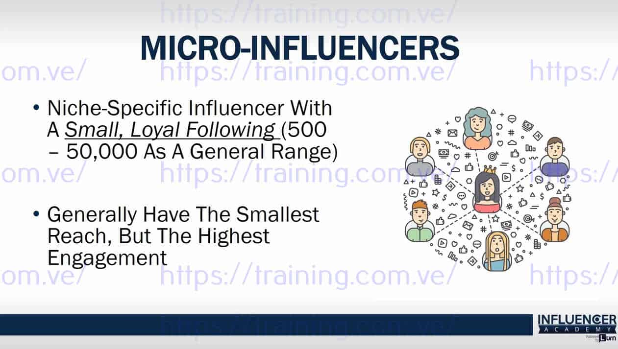 Influencer Academy by Anik Singal and Rosalee Maquinay Discount