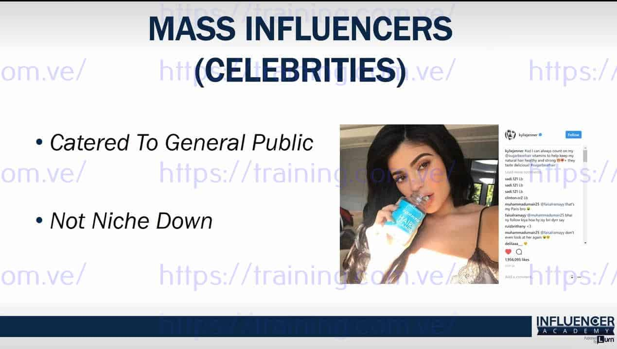 Influencer Academy by Anik Singal and Rosalee Maquinay Free
