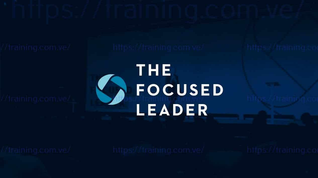 The Focused Leader by Michael Hyatt 1