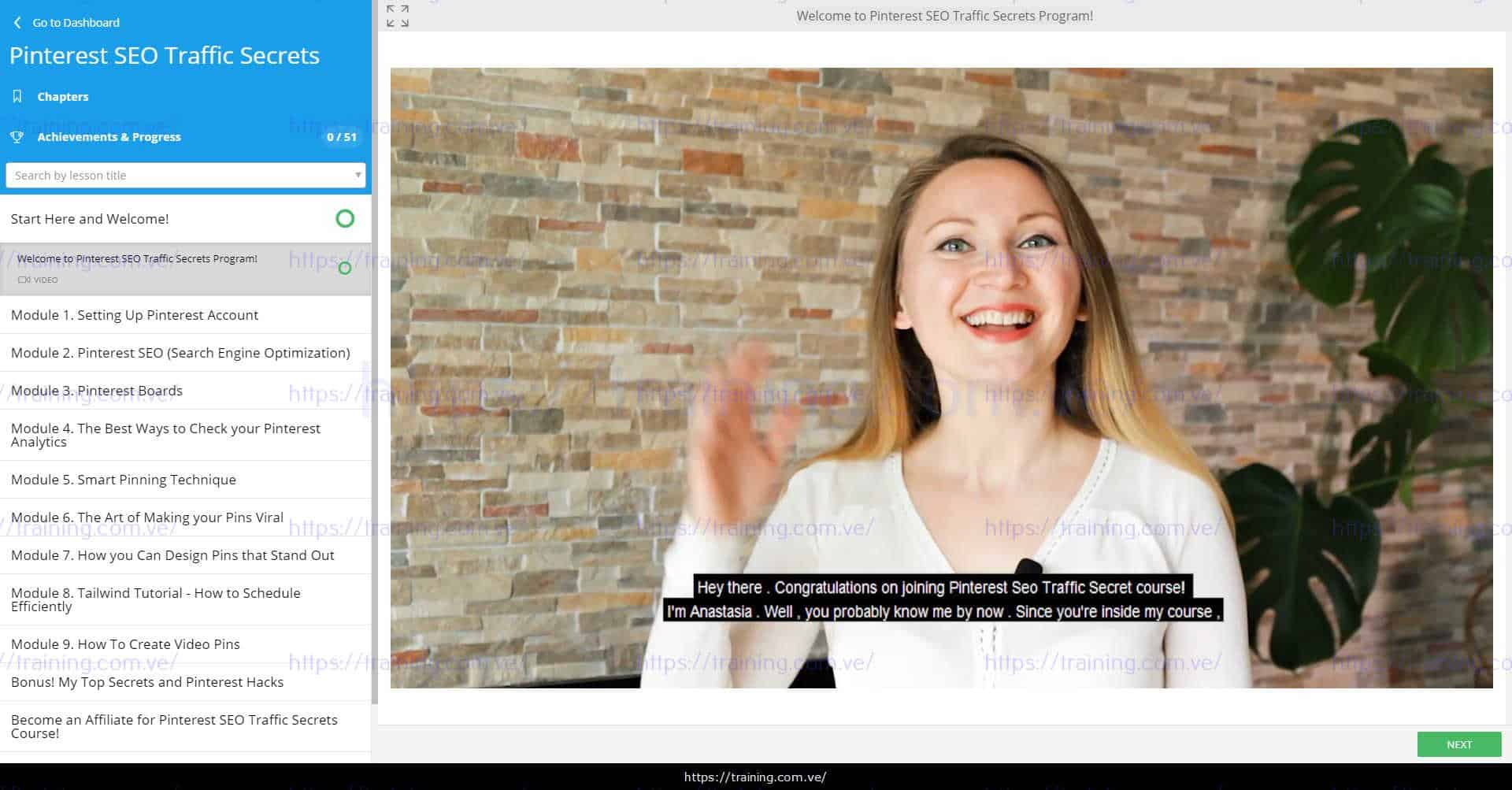 Pinterest SEO Traffic Secrets 2019 by Anastasia Blogger Download
