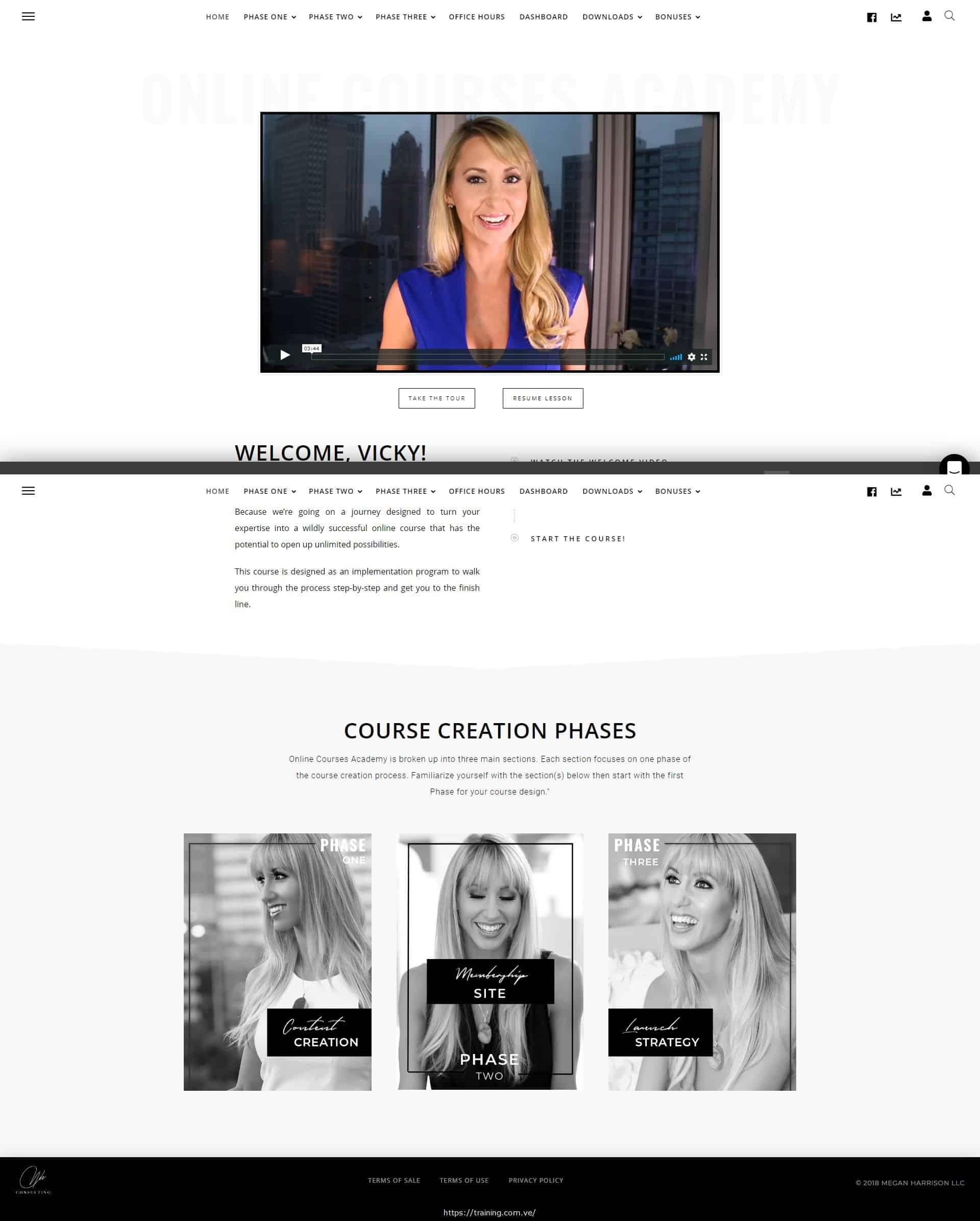 Online Course Academy by Megan K Harrison Download