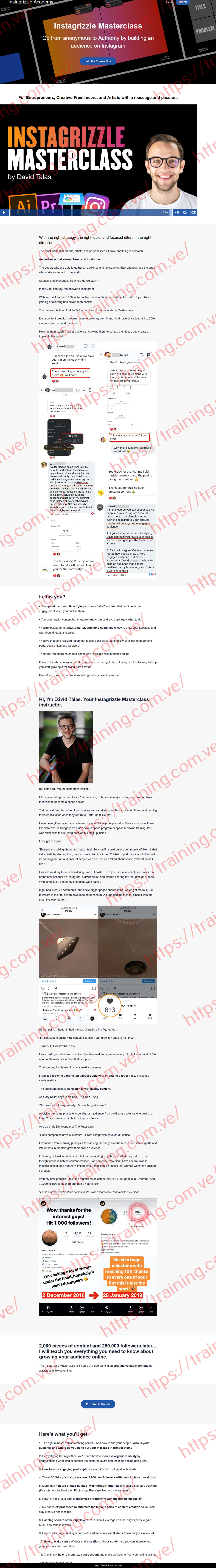 Instagrizzle Masterclass by David Talas Sales page