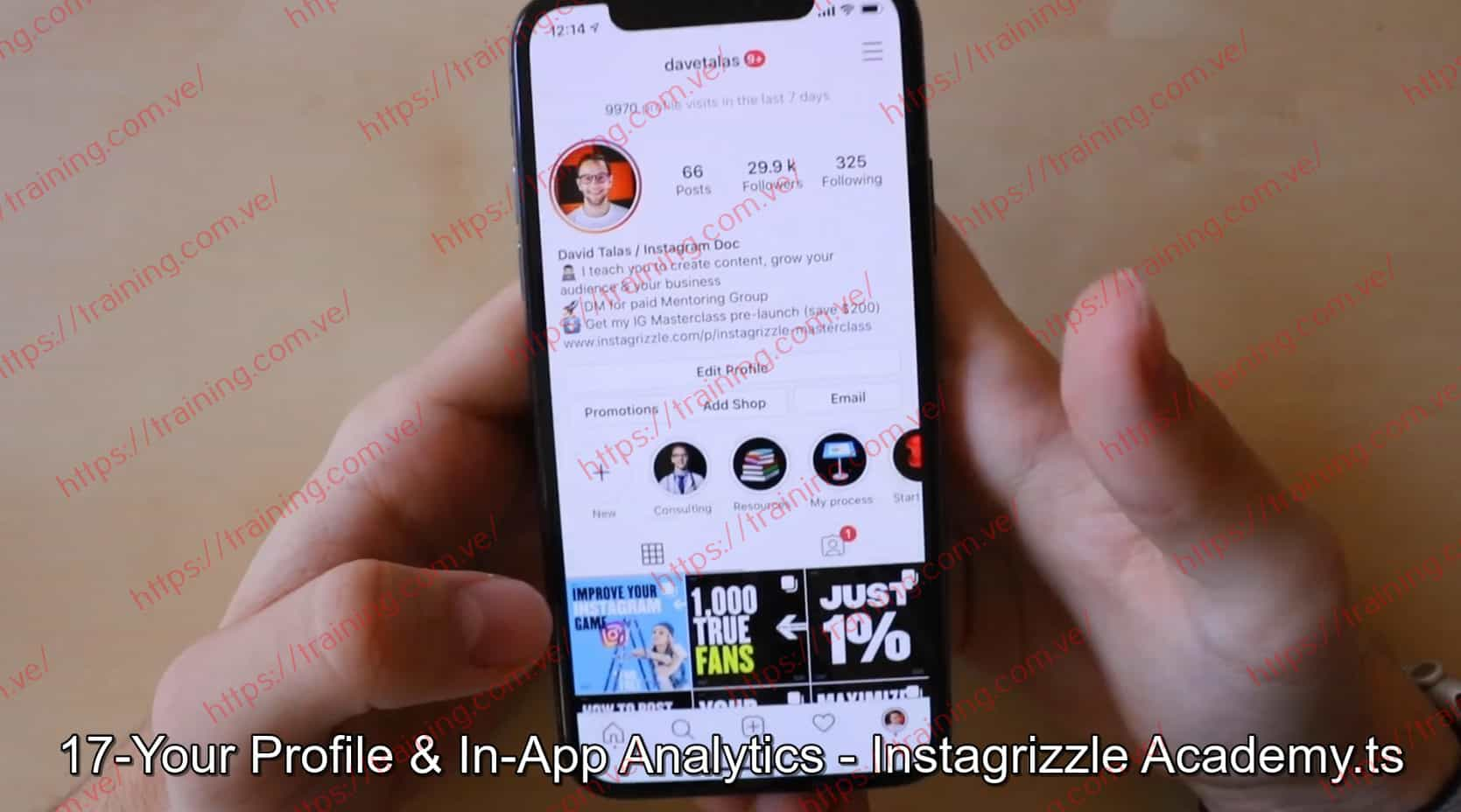 Instagrizzle Masterclass by David Talas Discount