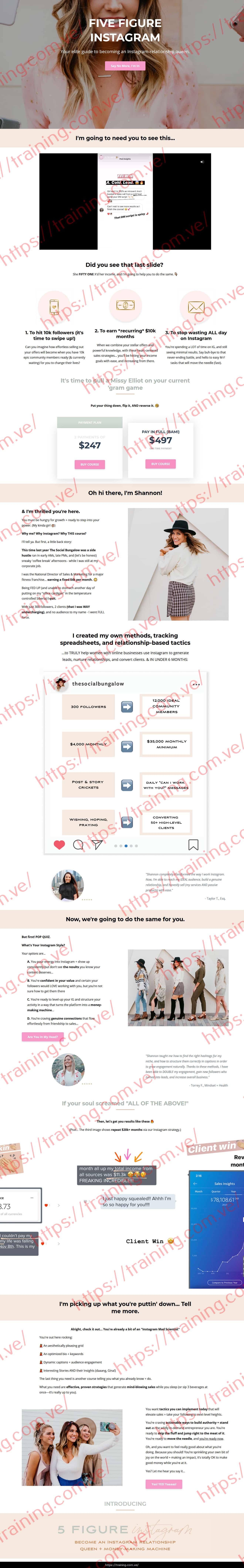 Five Figure Instagram by Shannon Lutz Sales Page