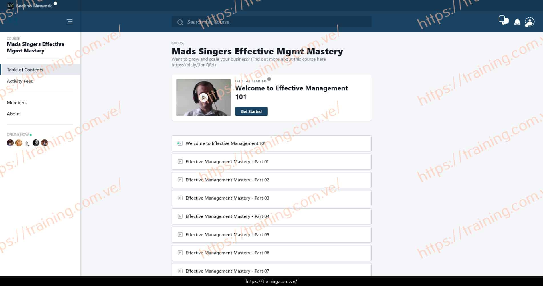 Effective Management Mastery by Mads Singers Download