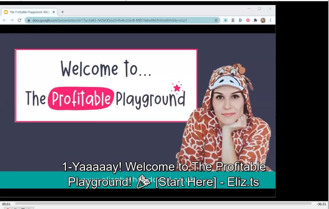 The Profitable Playground by Elizabeth Goddard Discount