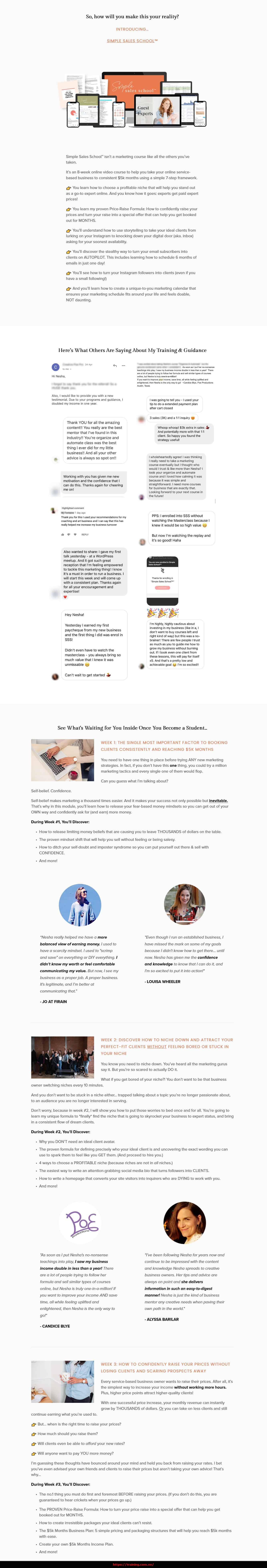 Simple Sales School by Nesha Woolery sales page