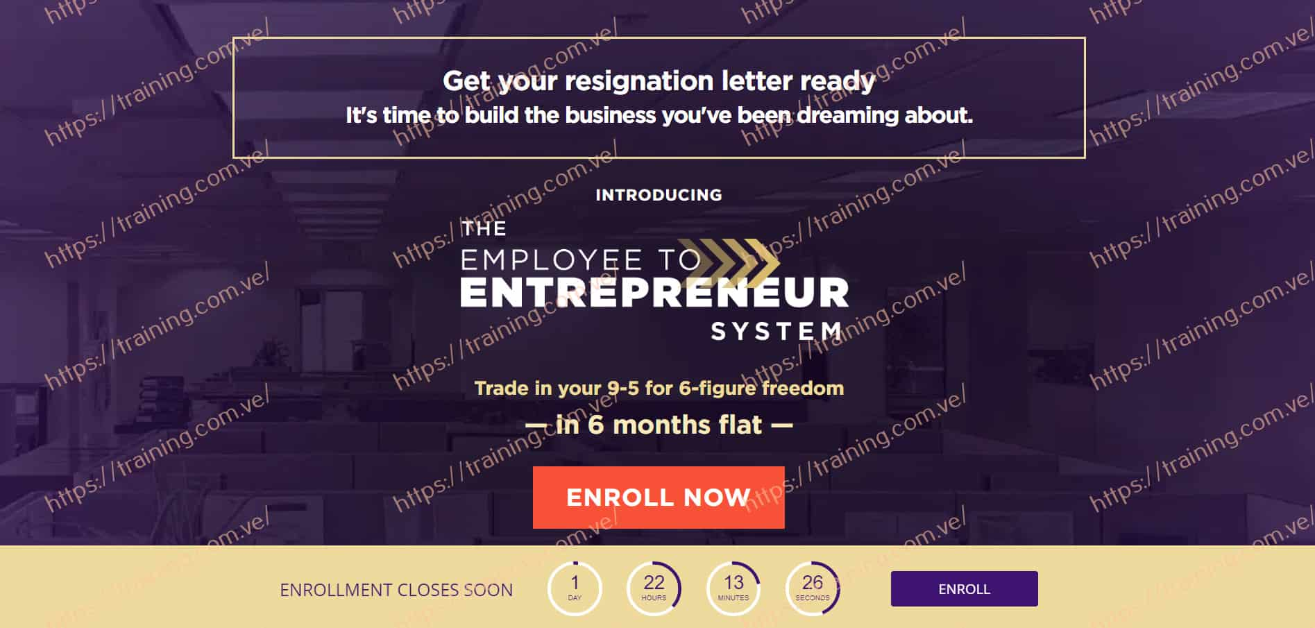 Employee to Entrepreneur 2020 by Luisa Zhou Sales Page